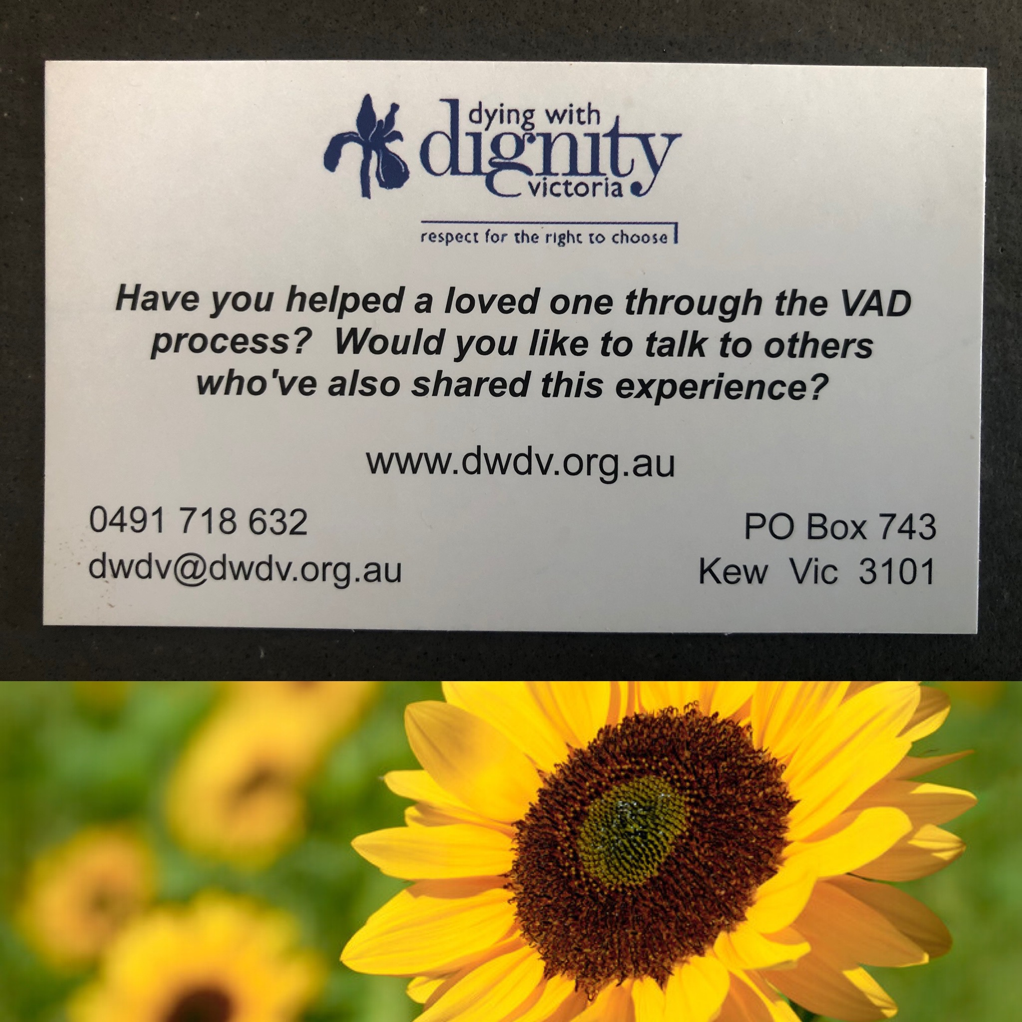 After VAD – a support group for family and friends